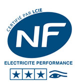 nf electricite performance